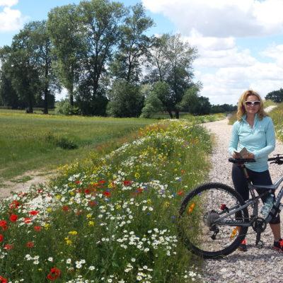 Wycieczka rowerowa nad wisłą